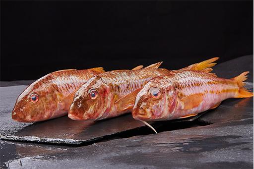 salmonete - Pescados